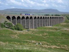 Photo: Class 158 train on Ribblehead Viaduct