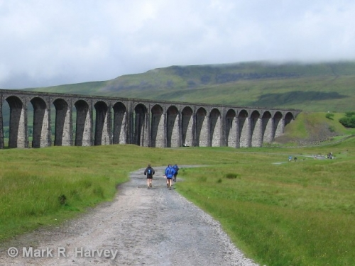 FoSCL walkers approaching Ribblehead Viaduct. Image courtesy of Mark R. Harvey.jpg